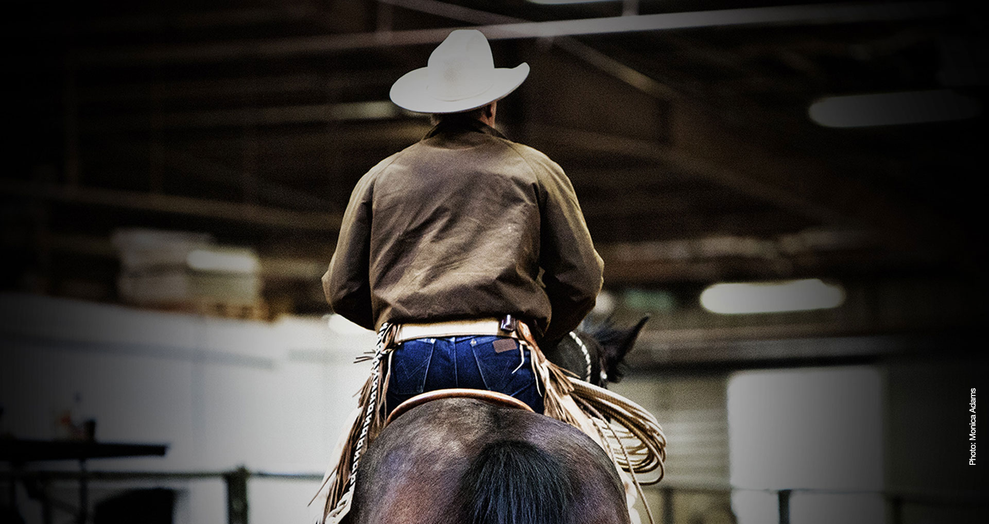 back view of Buck on a horse at a clinic