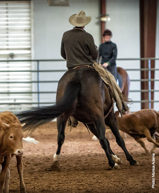 back view of Buck on a horse inside an arena